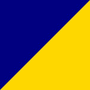 Zils/Dzeltens
